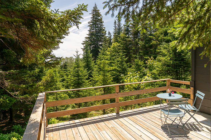 aragosta-goose-cove-bunchberry-cottage-1